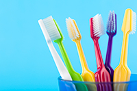 A close up of several toothbrushes in a cup.